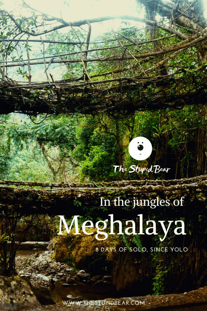 places to see in meghalaya
