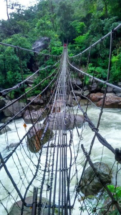 A rope bridge to cross over the rivers in the jungles of Meghalaya