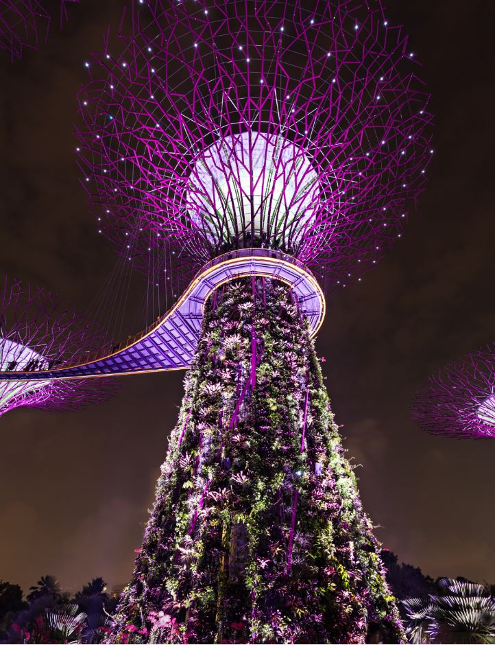 Singapore Travel Blogs