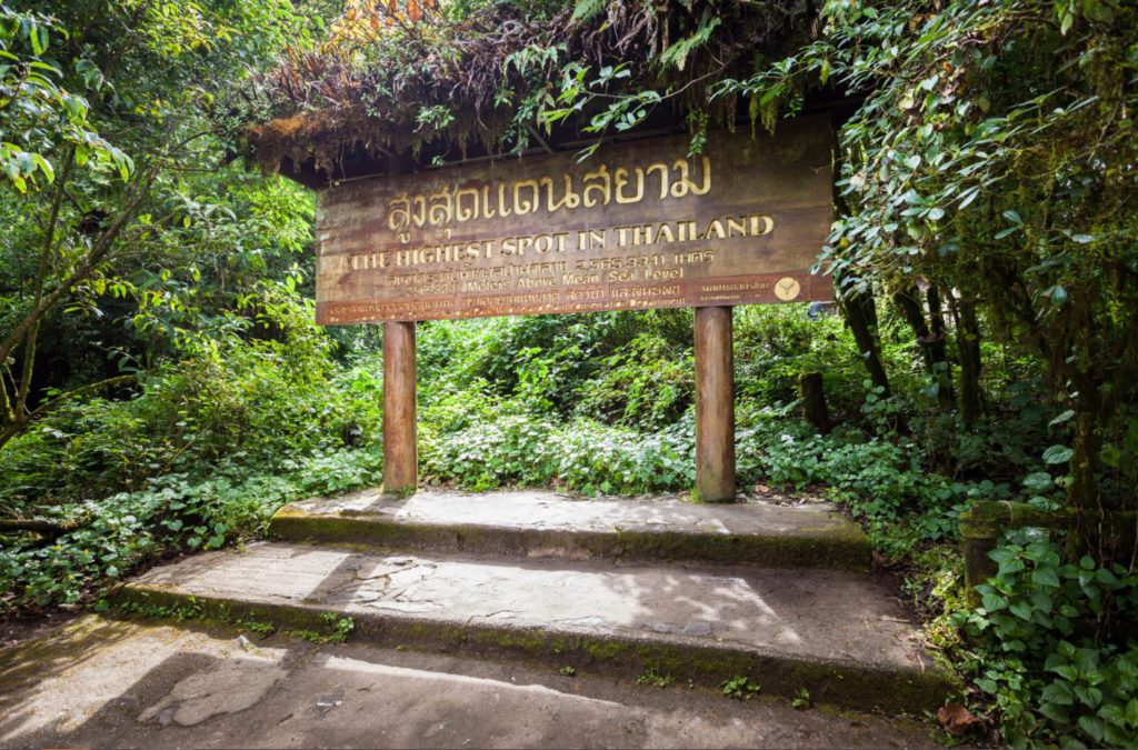 Highest point in Thailand at Doi Inthanon