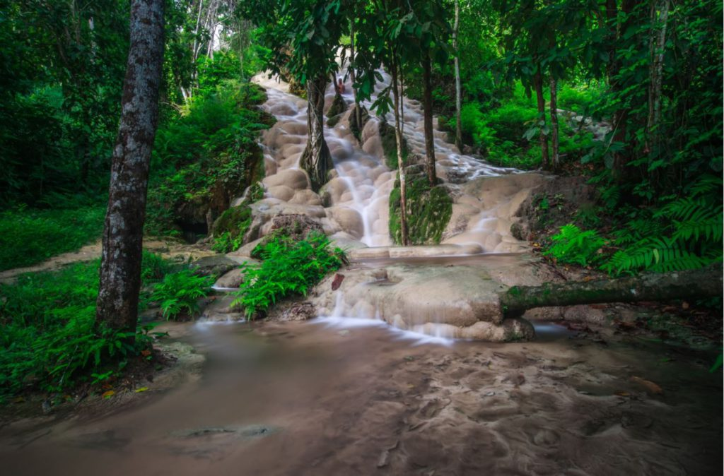 Bua Tong or Sticky waterfalls, north of Chiang Mai