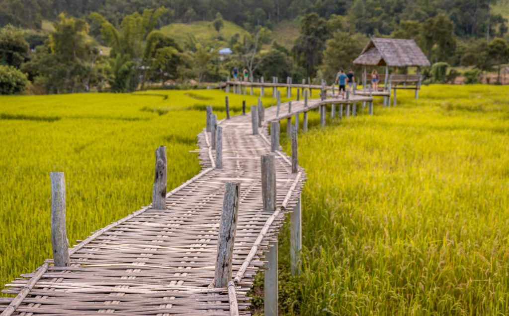 Woven Bamboo Bridge in Pai