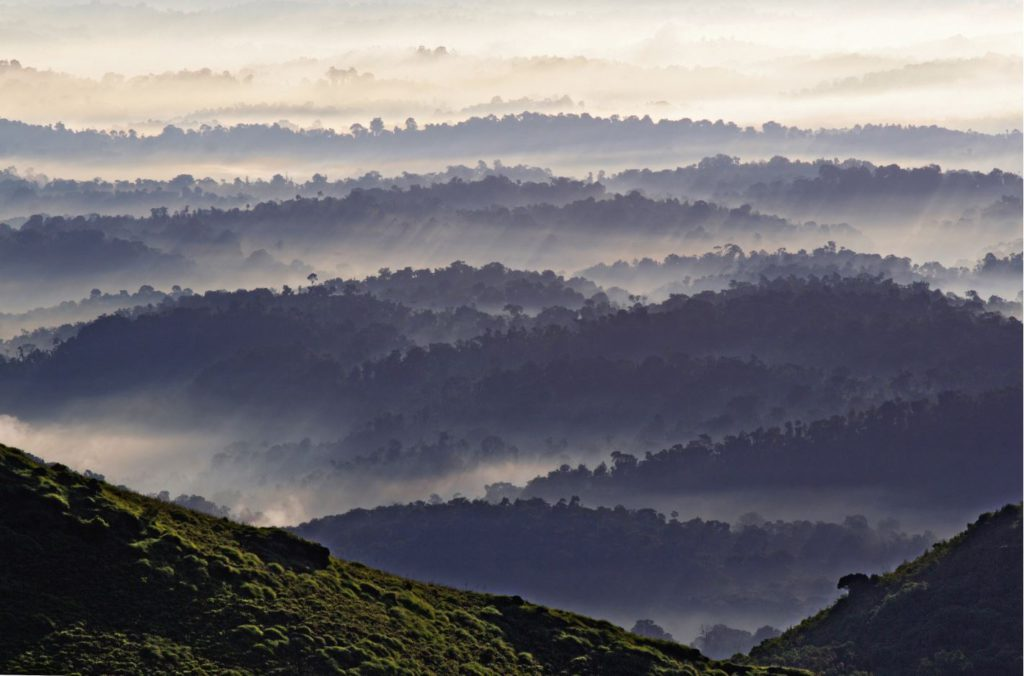 Sunrise View from Thadiyandamol Peak