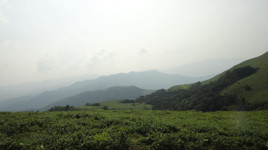 View in Mandalpatti