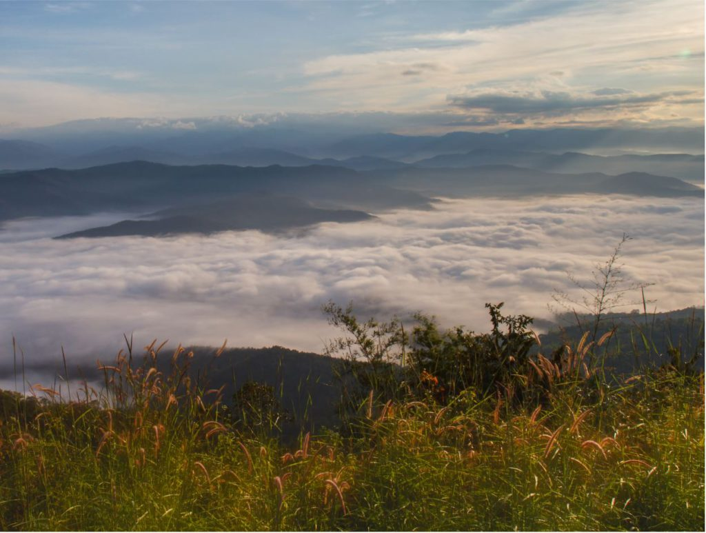 A bed of clouds that you can see from Doi Samer Dao