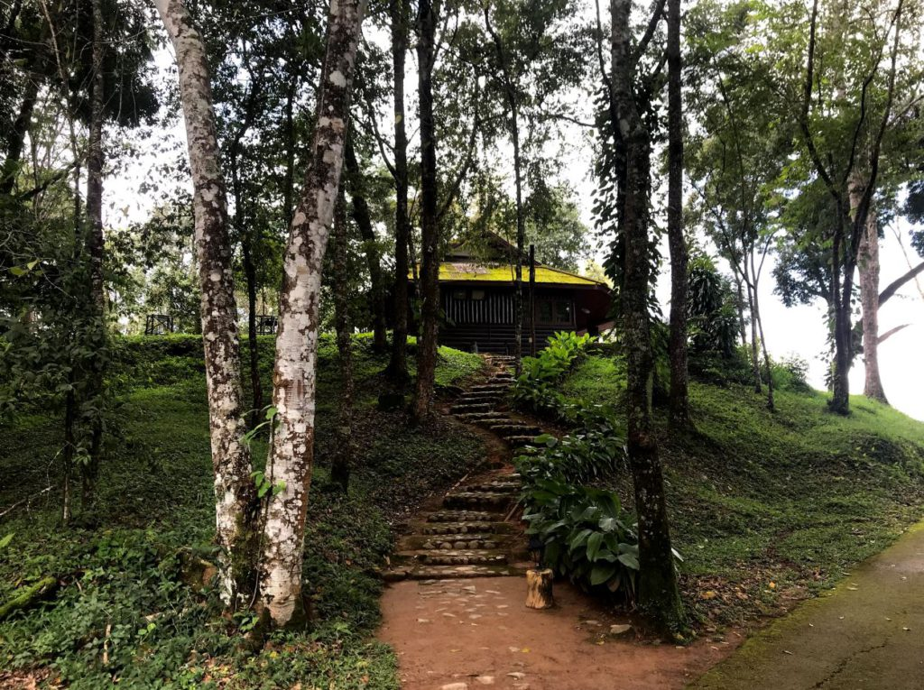 Bungalows with a view in Doi Phu Kha National Park