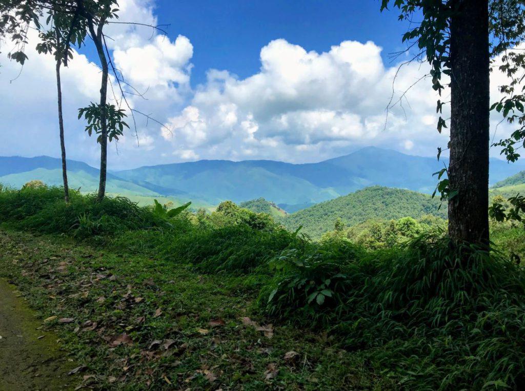 View from Doi Phukha National Park