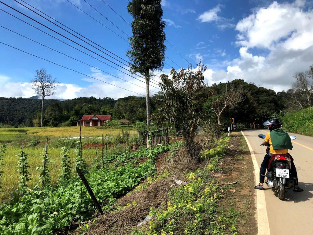 Mae Hong Son Loop roadtrip
